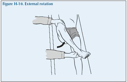 H-10 External rotation