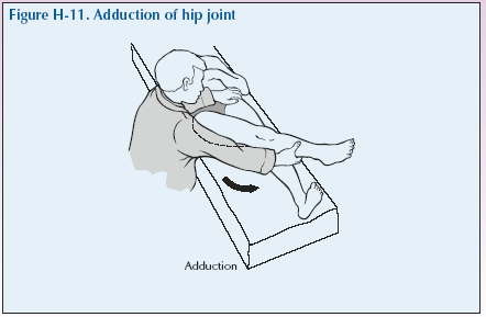 H-11 Adduction of hip joint