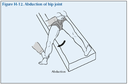 The Hip | Global Alliance for Musculoskeletal Health