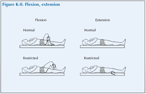K-8 Flexion, extension