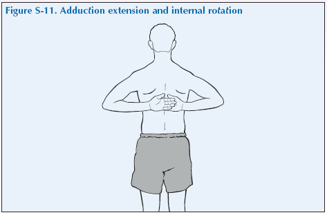 S-11 Adduction extension and internal rotation