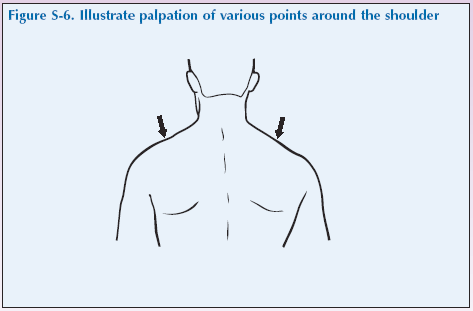 S-6 Illustrate palpation of various points around shoulder