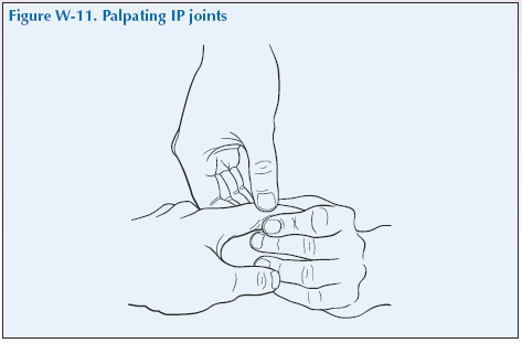 W-11 Palpating IP joints